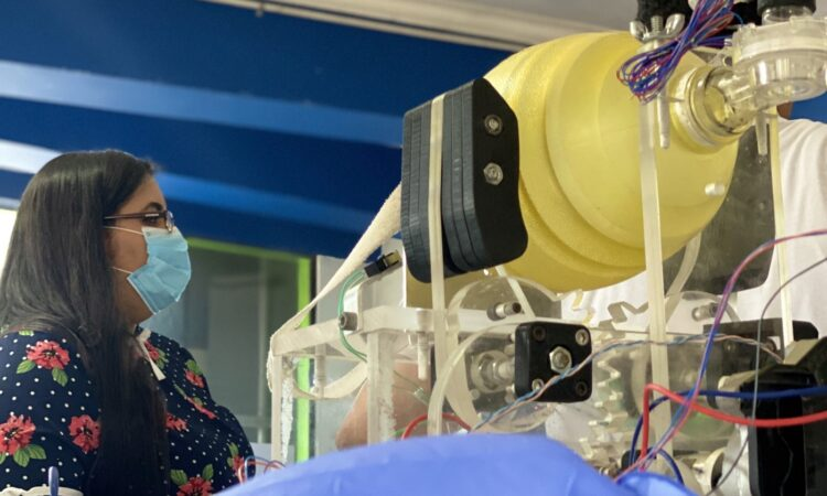 EE.UU. supera los 115.000 muertos y 2 millones de contagios de COVID-19