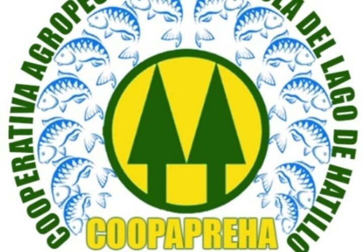Nace la Cooperativa de Productores de Tilapia